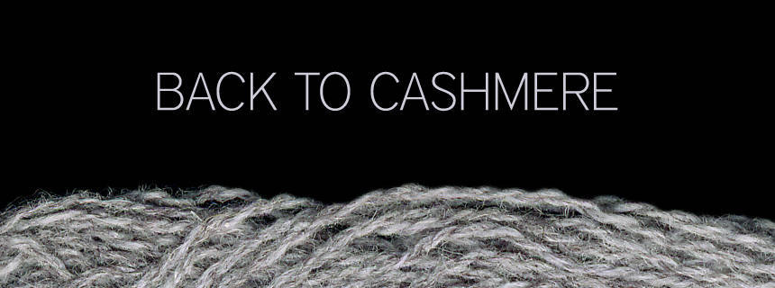 Back to cashmere ? a very special offer.